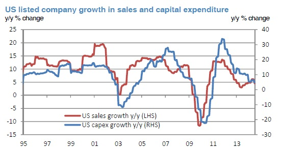 US growth in ssales and capex 1995-2013 y:y change